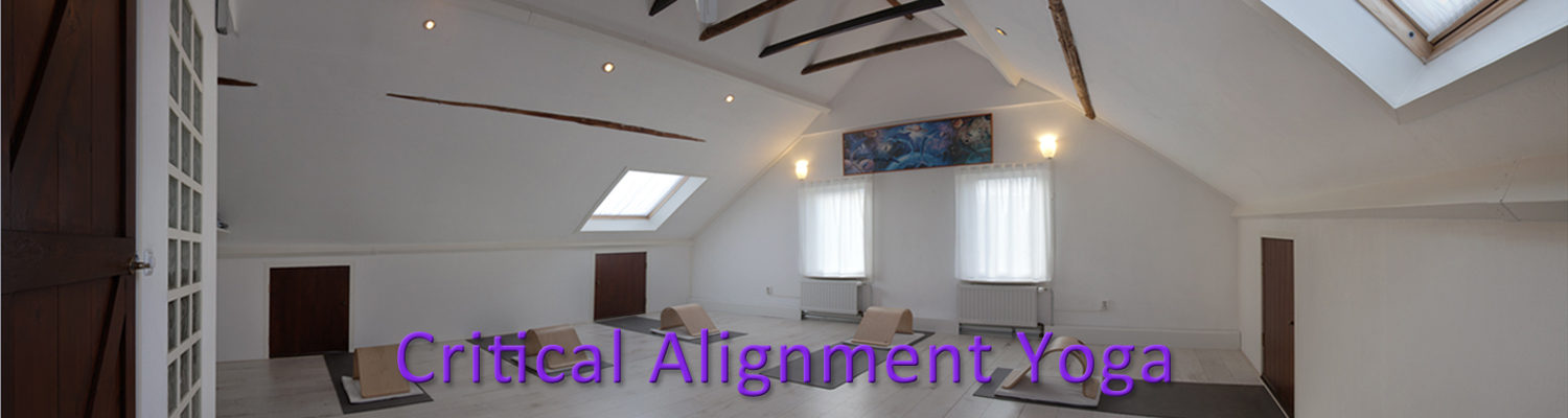 Critical Alignment Yoga in Hoogeveen